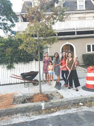New Tree Board Celebrates Arbor Day